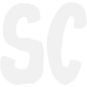 Garden Rojo 4x12 Marble Mosaic Border Listello Tile Tumbled